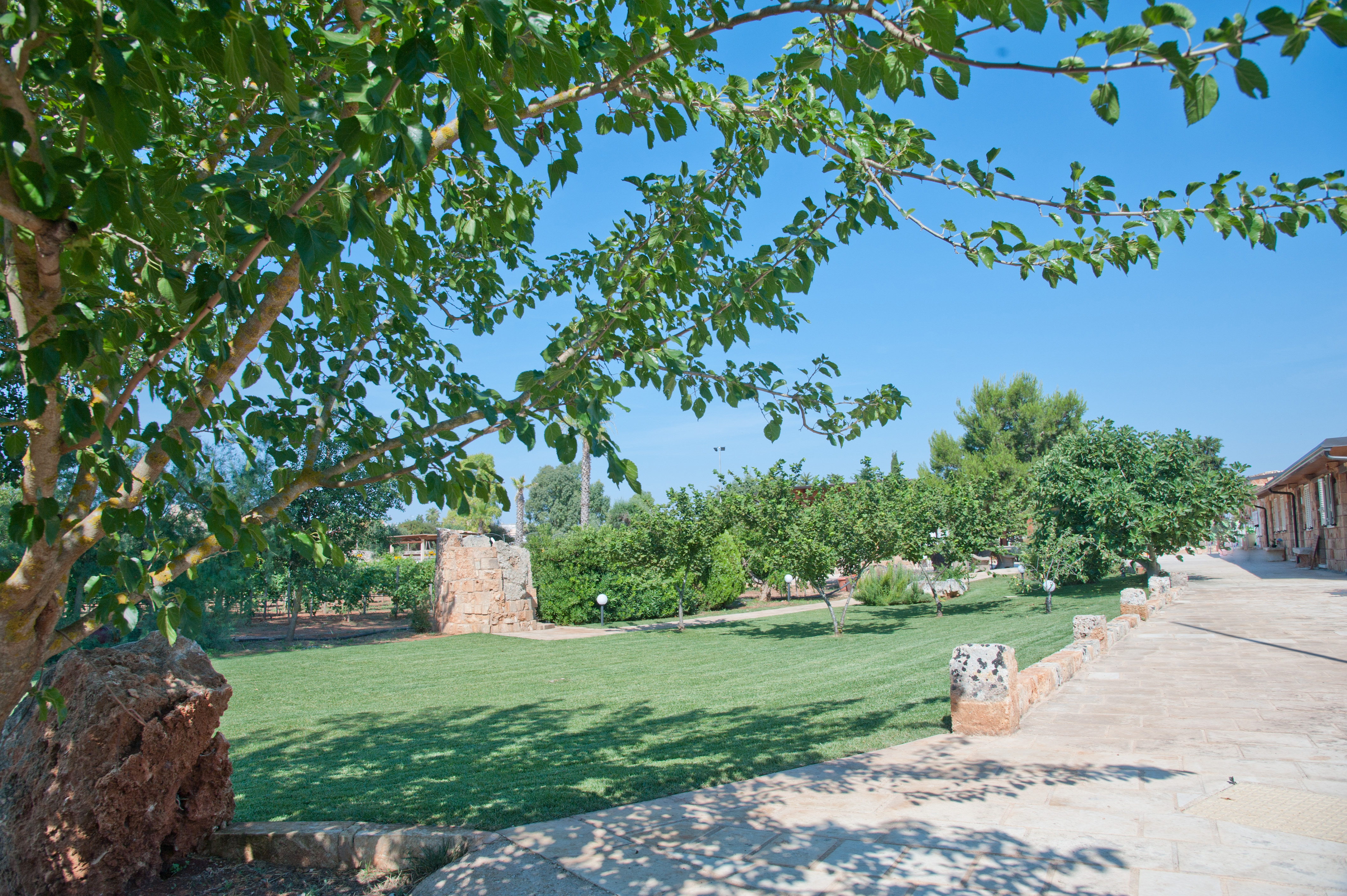 Esterni, giardino, frutteto Tenuta Le Casette, appartamenti nel Salento